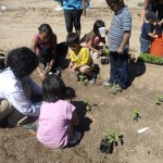 Travis giving the kids intructions on on how to plant chiles.